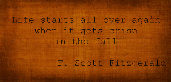 fall quote  Licht Years