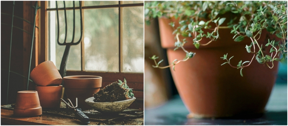Collage potting.jpg